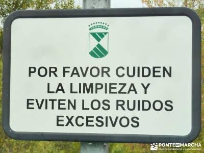 La Pedriza - Collado del Cabrón - Charca Verde_ Cuidado Senderistas;toledo nocturno